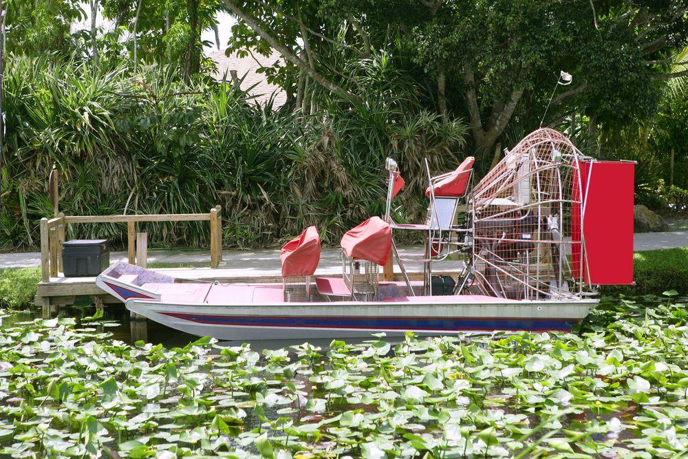 Everglades-4